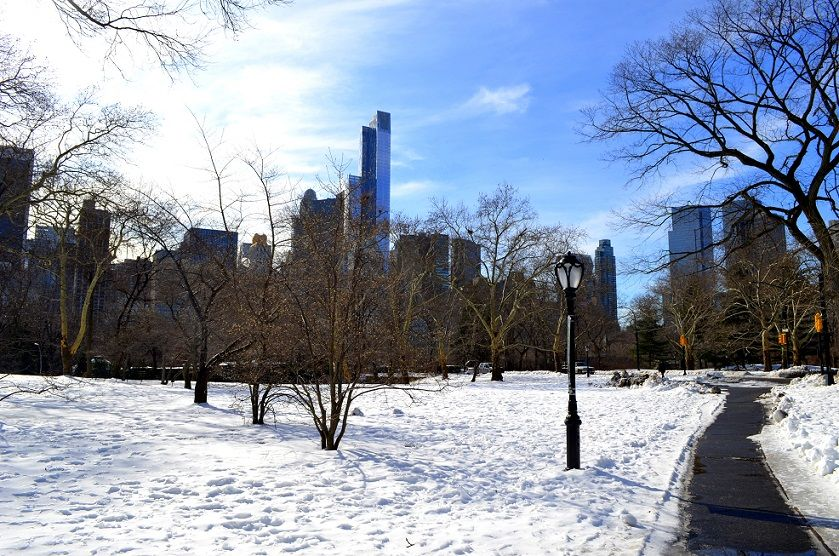 Der Central Park im Winter
