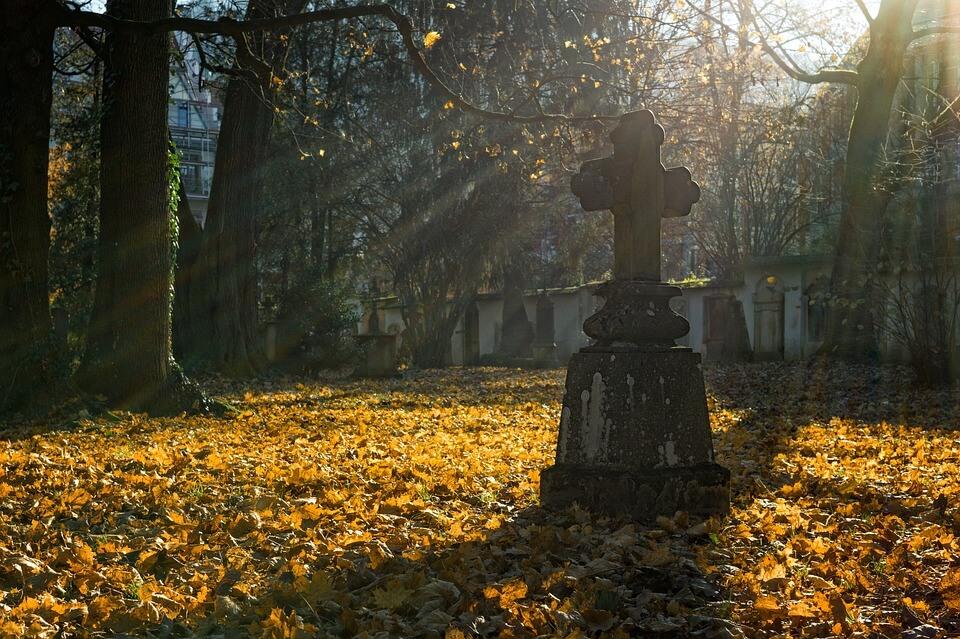 autumn-2182008_960_720